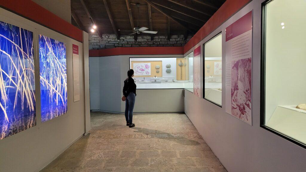 Altos de Chavon Museum